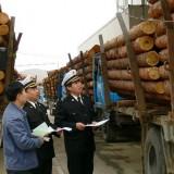 刺猬紫檀木材进口商检流程