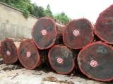 刺猬紫檀木材进口报关公司