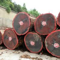 非洲刺猬紫檀木材进口非洲红木木材进口