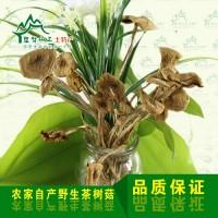茶树菇批发 修水土特产