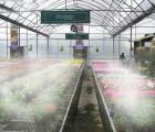 农业植保机械喷雾设备 喷雾设备大棚 大棚喷雾降温设备