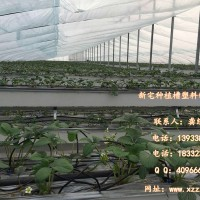 草莓槽无土栽培草莓育苗槽 气雾栽培种植槽