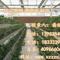 草莓栽培槽立体栽培槽蔬菜栽培槽