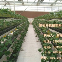 藁城供应草莓立体种植槽 气雾栽培种植槽 生态农业