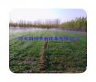 延安市宝塔区温室花卉灌溉优质【喷水管】