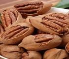 企业没有进出口权怎么进口坚果类食品