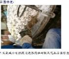 【紫泉石化装备】食品级胶粘剂