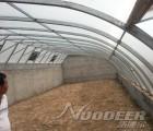 衡水蔬菜大棚阳光板厂家、蔬菜大棚阳光板价格