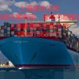 上海港代理非洲刺猬紫檀进口报关公司
