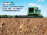 美国大豆上海港进口报关代理|黄豆进口代理清关公司