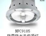 温州供应FAD-S系列防水防尘防腐灯