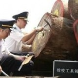 上海刺猬紫檀进口商检代理