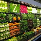 如何才能提高果蔬保鲜冷库节能要求?
