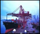 青岛港进口食品所需手续流程东南亚清关报关商检代理公司