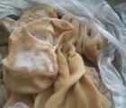 冷冻肉类食品 羊肚 羊肚子 精选羊肚 羊肚子 冷冻羊杂羊肚
