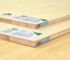 千年舟水曲柳细木工板贴面板 多层板 大芯板 奥古曼