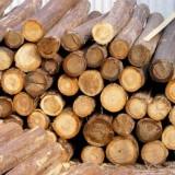 越南橡胶木进口单证不齐可以报关吗