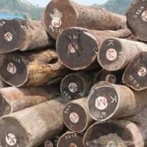 出售进口非洲原木铁木豆原木图片