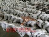 玫瑰金不锈钢蚀刻造型压花脚  现货供应压花玫瑰金茶几脚