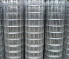 利菲彤丝网厂(在线咨询),电焊网,涂塑电焊网片
