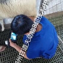 河南洛阳畜牧局招标进口羊用B超报价W2