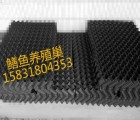 河北华强公司生产黑色避光鳝鱼巢 S型蜂巢状鳝巢