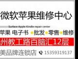 深圳IPHONE备用电池方案/IPHONE备用电池