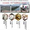 生蚝的做法_湛江那里有好吃的生蚝图片