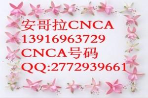 非洲安哥拉CNCA官方办理