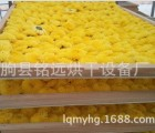 厂家直销特卖烘干设备 菊花玫瑰花烘干机