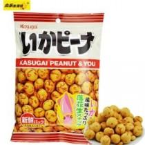 广州日本食品进口报关海运提货代理