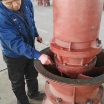 轴流泵|立式潜水轴流泵|天津潜成泵业轴流泵