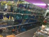 天津塘沽回收数控刀具数控刀片武清杨村高价回收数控刀片刀具轴承