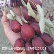 重庆新疆红枣批发多少钱