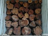 尼日利亚刺猬紫檀清关非洲木材