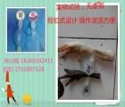 供应四川、重庆等地绿色无公害鸡鸭鹅脚环 二维码养殖可追溯