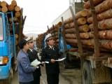广东木材刺猬紫檀进口报关机构