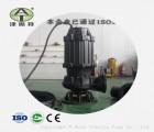 北京离心排污泵干式电机耦合式潜水污水泵带导轨导链