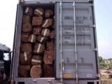 缅甸进口货代_缅甸木材进口清关方案-恒邦(缅甸)清关公司
