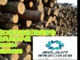 上海市上海木材进口操作流程|上海原木进口报检报关|代理原木进口清关