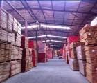 【榉木】,闸北榉木木板材,闸北榉木板材,上海森龙木业