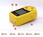 EM-4澳洲新便携式气体检测仪 声光报警 防尘防爆优质
