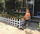 供应陕西西安木纹色PVC栏杆