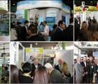 2017国际进口食品饮料博览会相约上海
