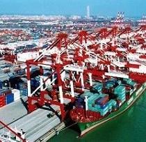 青岛进口非洲木材代理进口报关公司