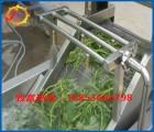 、诸城佳旭机械(图)、超市配送蔬菜清洗机质保期