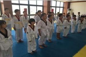 跆拳道竞技 昆山杰灵体育 跆拳道竞技护具