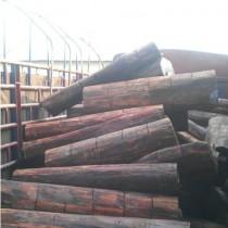 木材专业进口报关