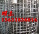 供应不锈钢网片 涂塑电焊网片 热镀锌电焊网片