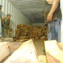 各类木材家具成品半成品进口?